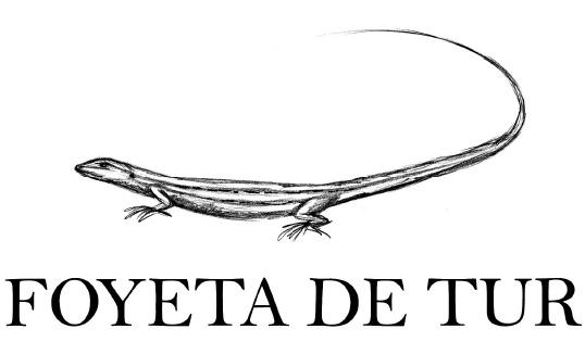 Foyata de Tur Logo